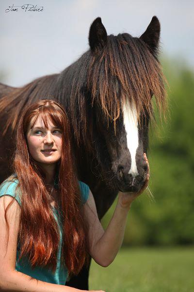 Améliorer la relation avec mon cheval introverti : 3 stratégies